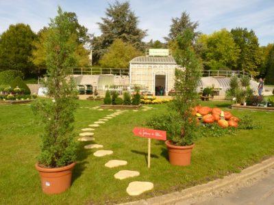 Jardinerie et fleuristerie ch teau des vaux for Jardinerie des jardins
