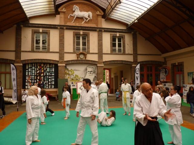 aikido (Small)